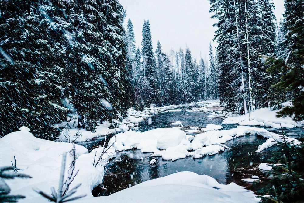 Heavy snow falling at the creek on the north side of Diamond Lake, Oregon