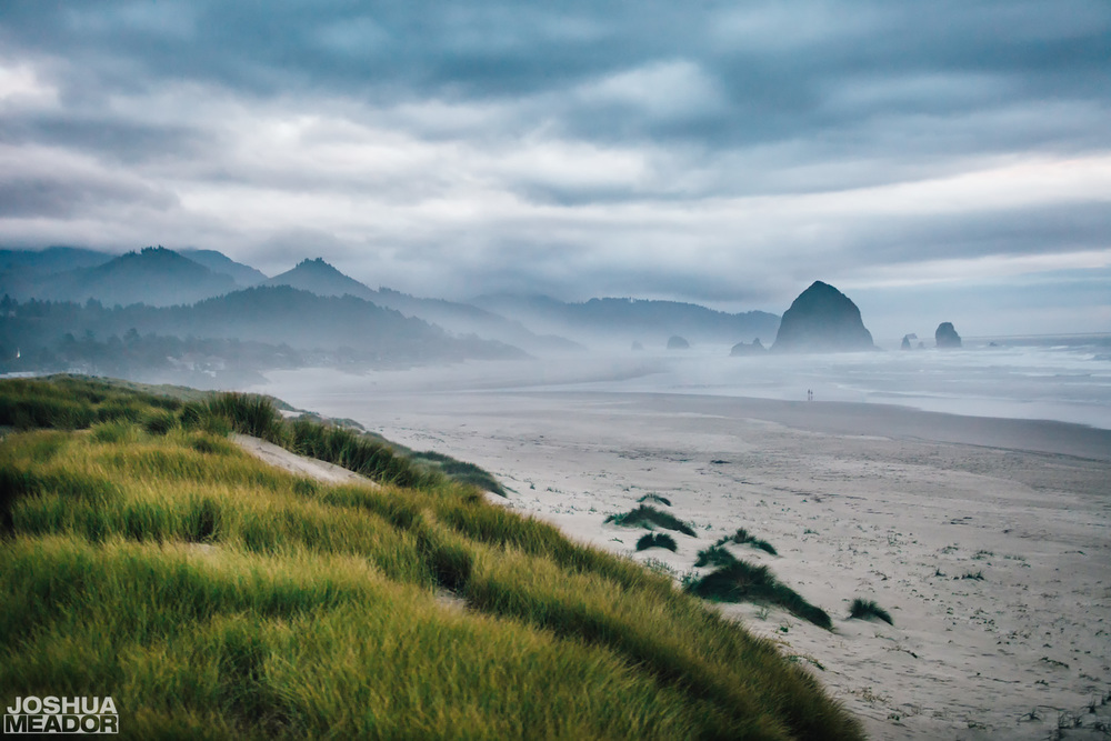 Dunes along the beach in Cannon Beach, OR with haystack rock and the mountains in the background