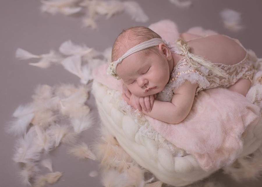 posed colorado springs newborn photography.jpg