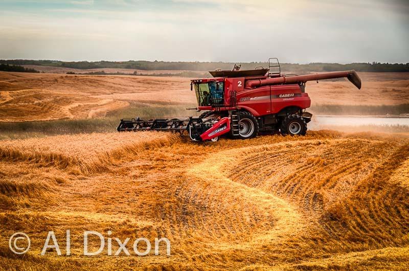 Harvest-13