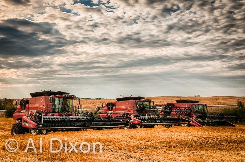 Harvest-10