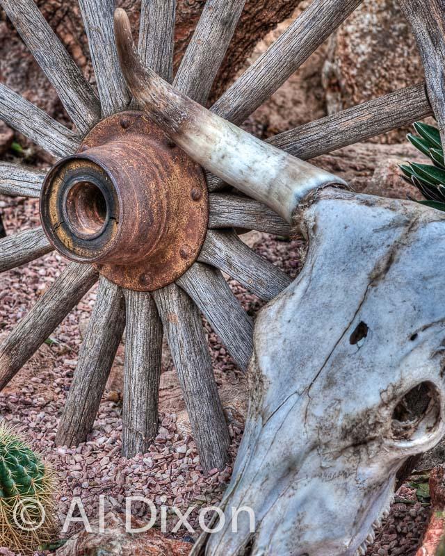 Wheel & Skull
