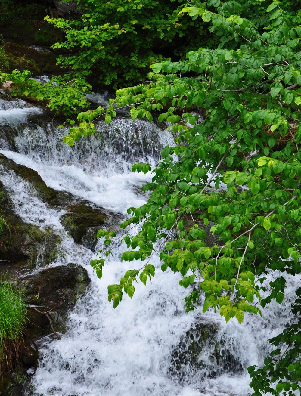 Giessbach Falls 1.jpeg