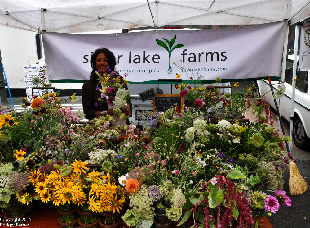Beautiful flowers grown by Silver Lake Farms at the Hollywood Farmers Market  ©Copyright 2015 Bridget Barnes