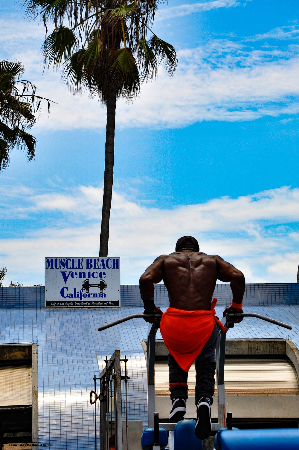 Muscle Beach  Venice Beach  ©Copyright 2015 Bridget Barnes