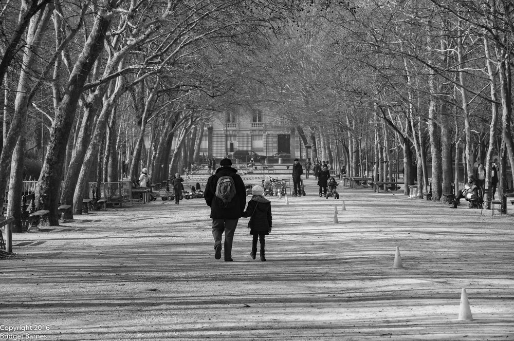 The perfectly manicured pathways of le Jardin du Luxembourg offer a gorgeous backdrop for family photos.