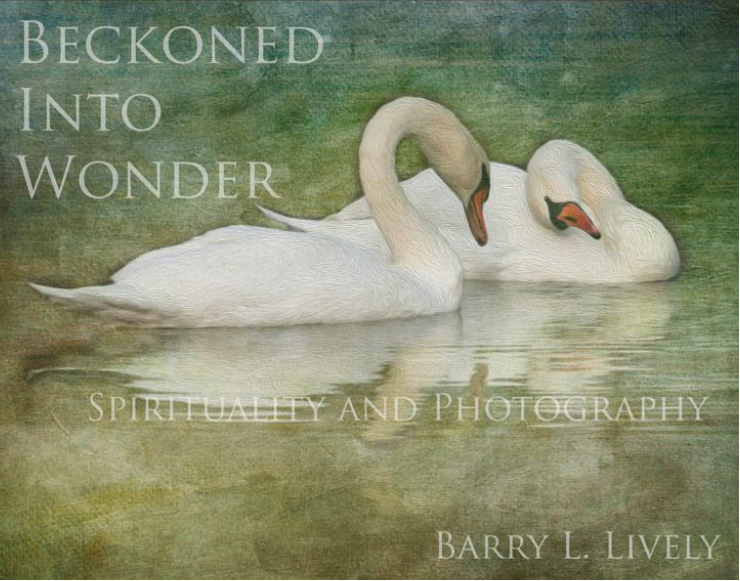 Beckoned Into Wonder cover.jpg