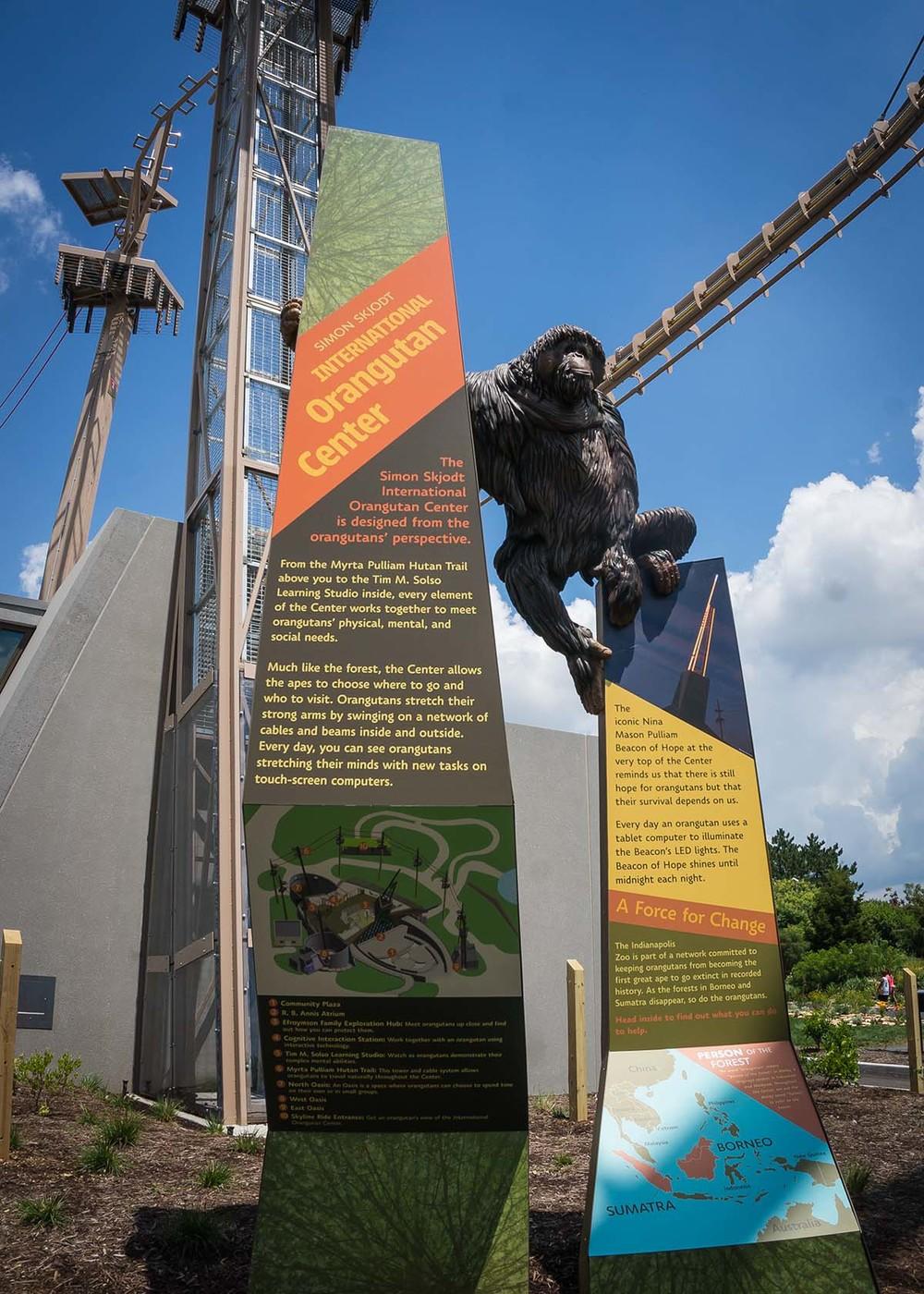 Simon Skjodt Orangutan Ctr-03436.jpg