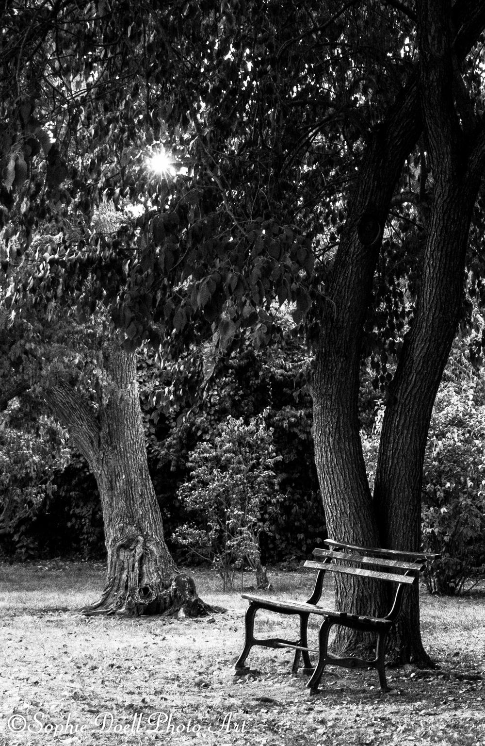 Holcomb_Gardens_08292013-closeup-2629.jpg