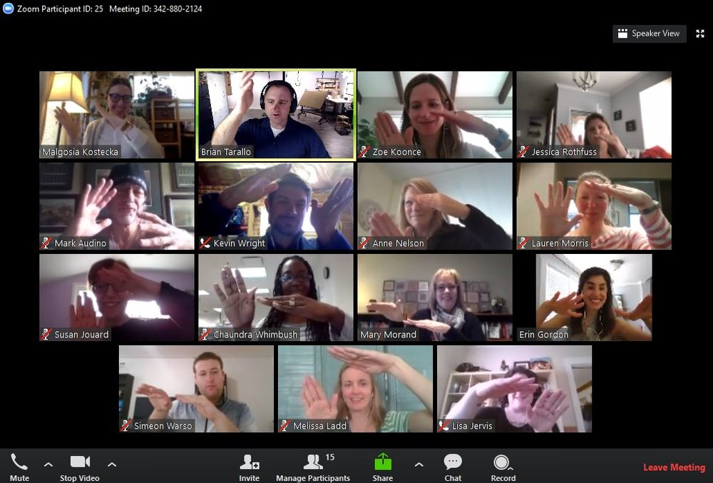 Screen shot of the March 2019 cohort of  Facilitating Virtual Collaboration  practicing  Mirror the Mime.   Used with the permission of the participants.