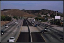Freeways are among the major threats to wildlife populations.