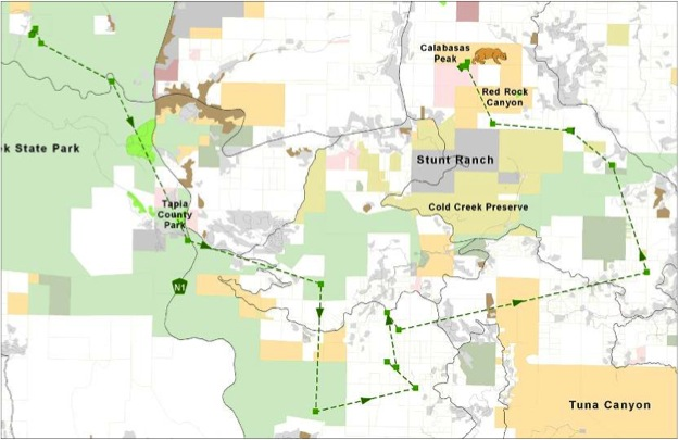 A map of the dispersal of P08.  He went east, settling into Topanga State Park and nearby areas including Tuna Canyon.