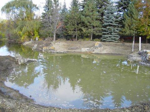 Nicholson pond 2004-10-14 025.JPG