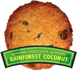 RainforestCoconut.jpg