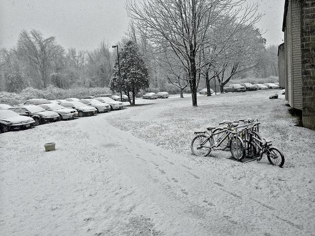 I love snow on Flickr.