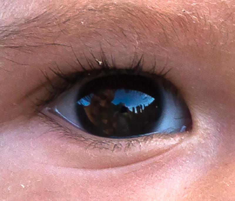 R60726_Eye_800px.jpg