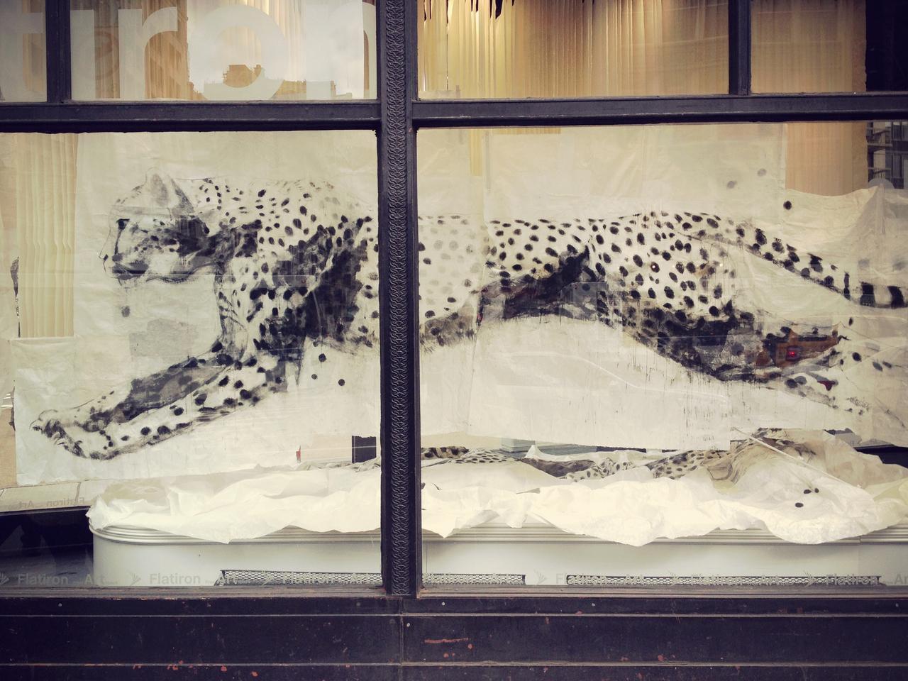 Leopard in Window #peppersearching #pepper #photos #leopard #window #painting