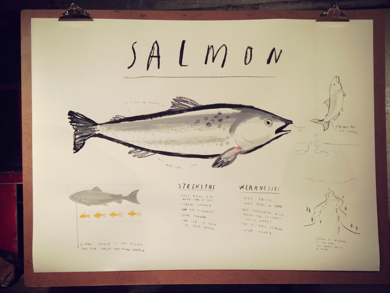 Salmon by Mul Holland Hwang #peppersearching #pepper #drawings #paper #fish