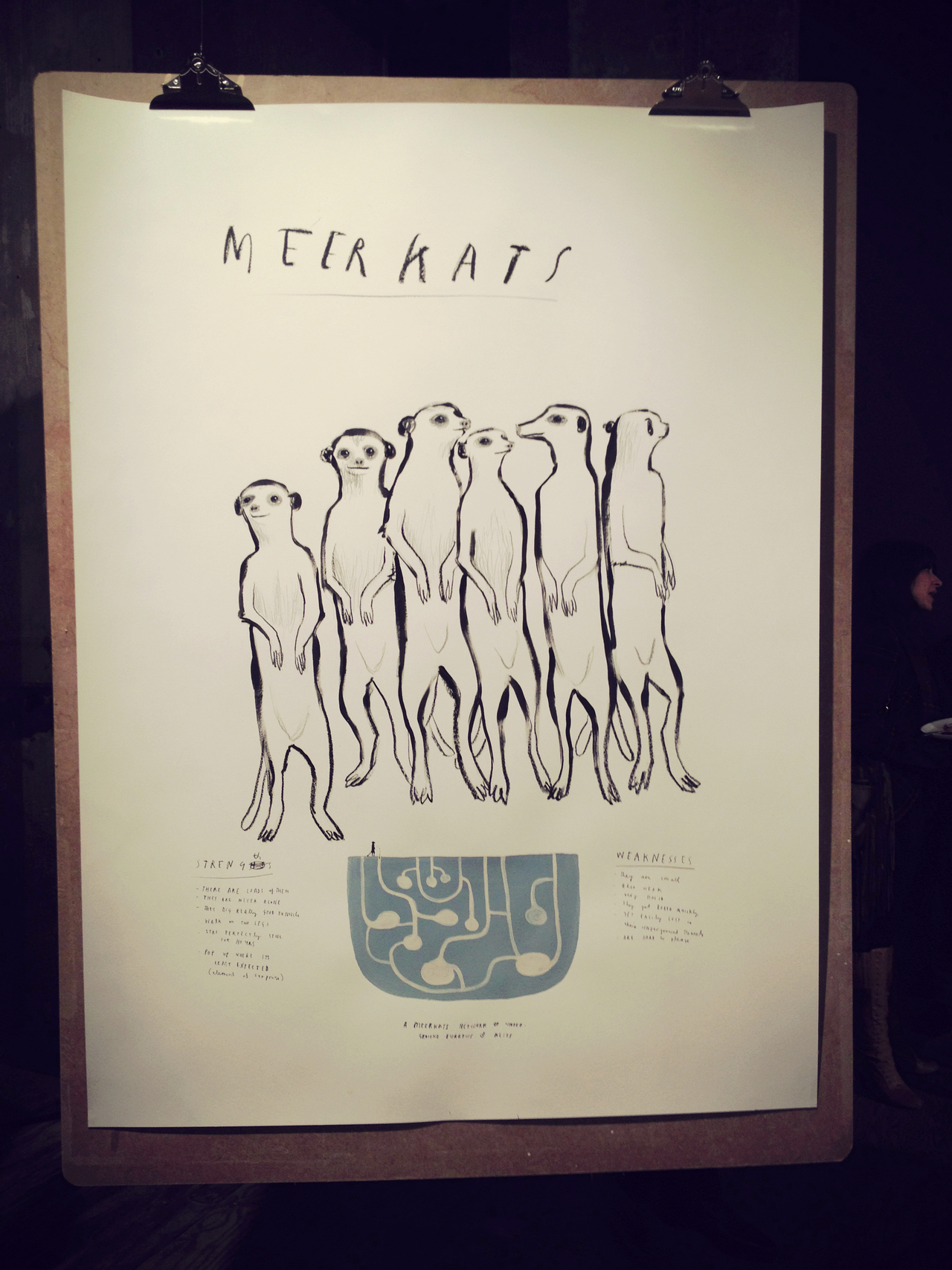Meetkats by Mul Holland Hwang #peppersearching #pepper #drawings #art #meerkats #clipboard