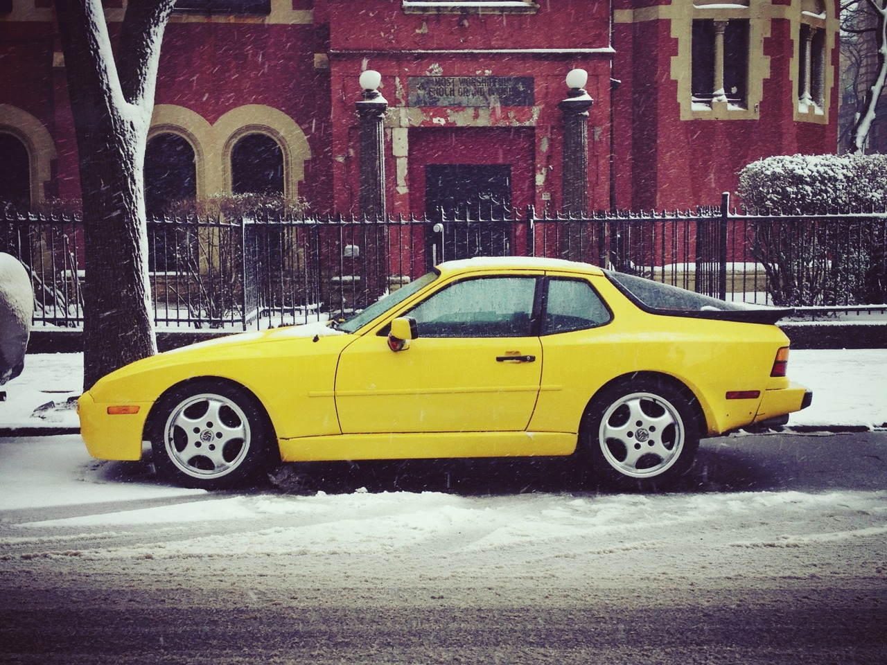 Canary Mercy #peppersearching #pepper #photos #porsche #canary #snow