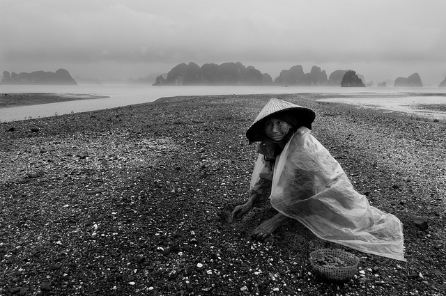 lensblr-network: Digging for clams An elderly Vietnamese woman digging for clams at low tide on a stormy summer's morning on Van Don Island, Quang Ninh Province. by willbrantingham.com