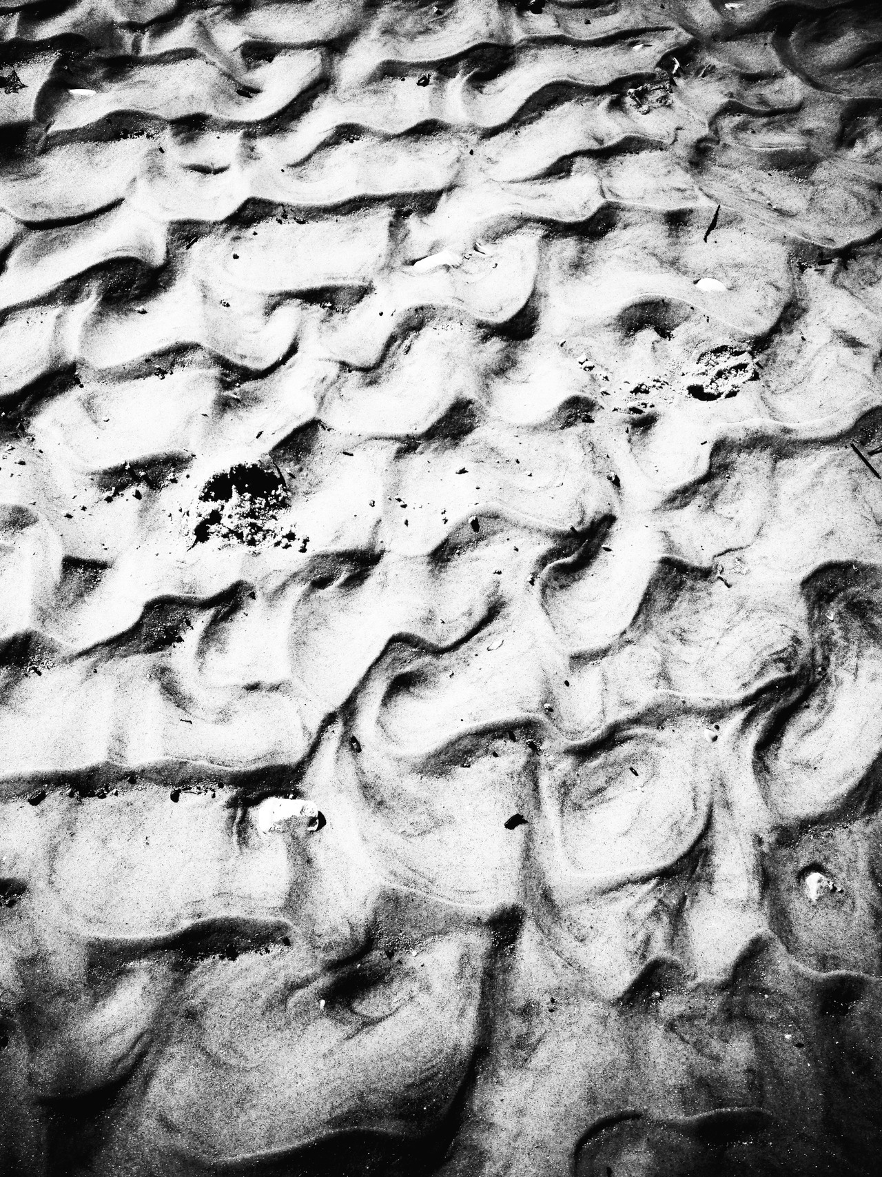 Dunes - #peppersearching #pepper #photos #dunes #sand