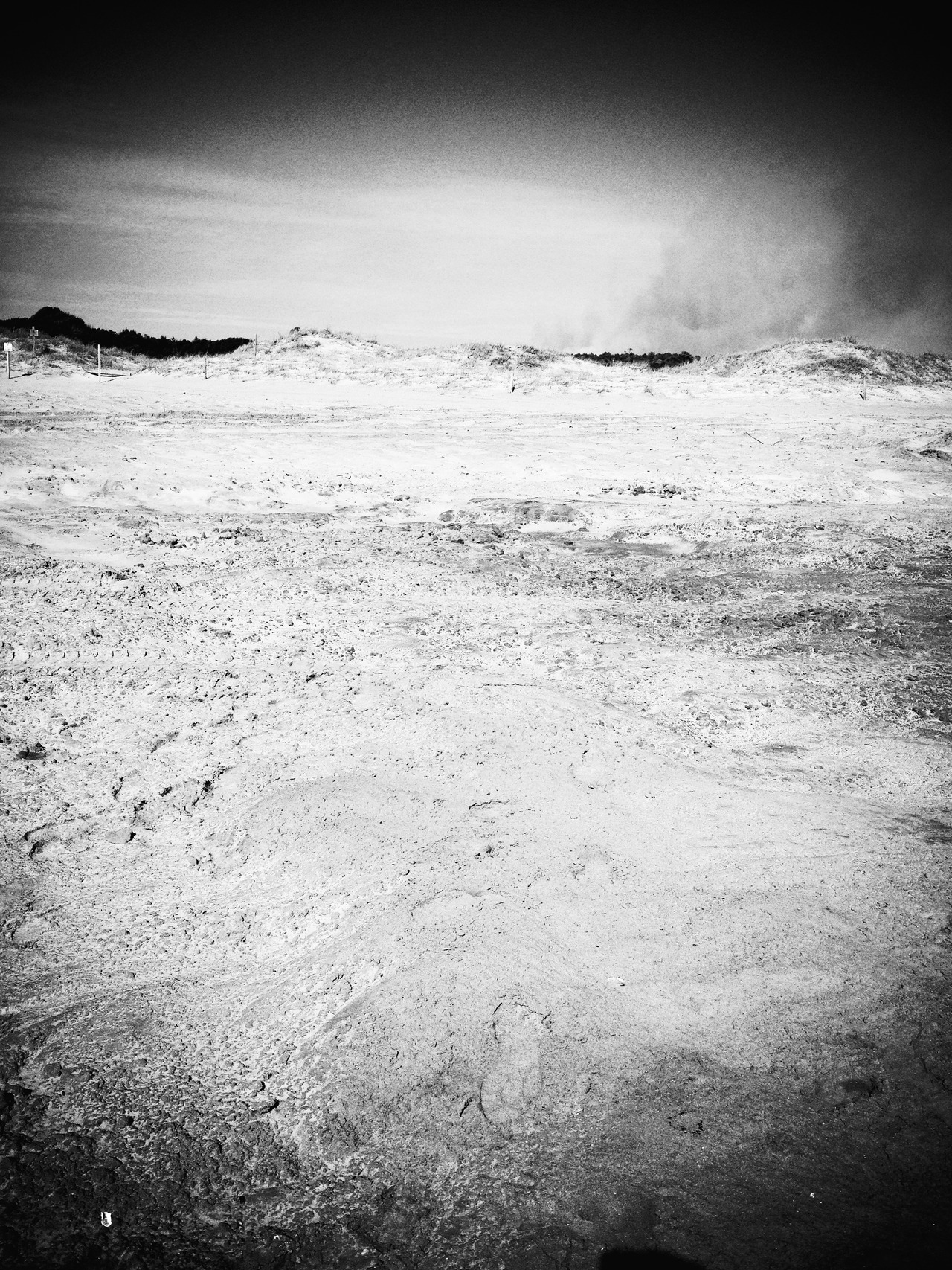 After the calm #peppersearching #pepper #photos #beach