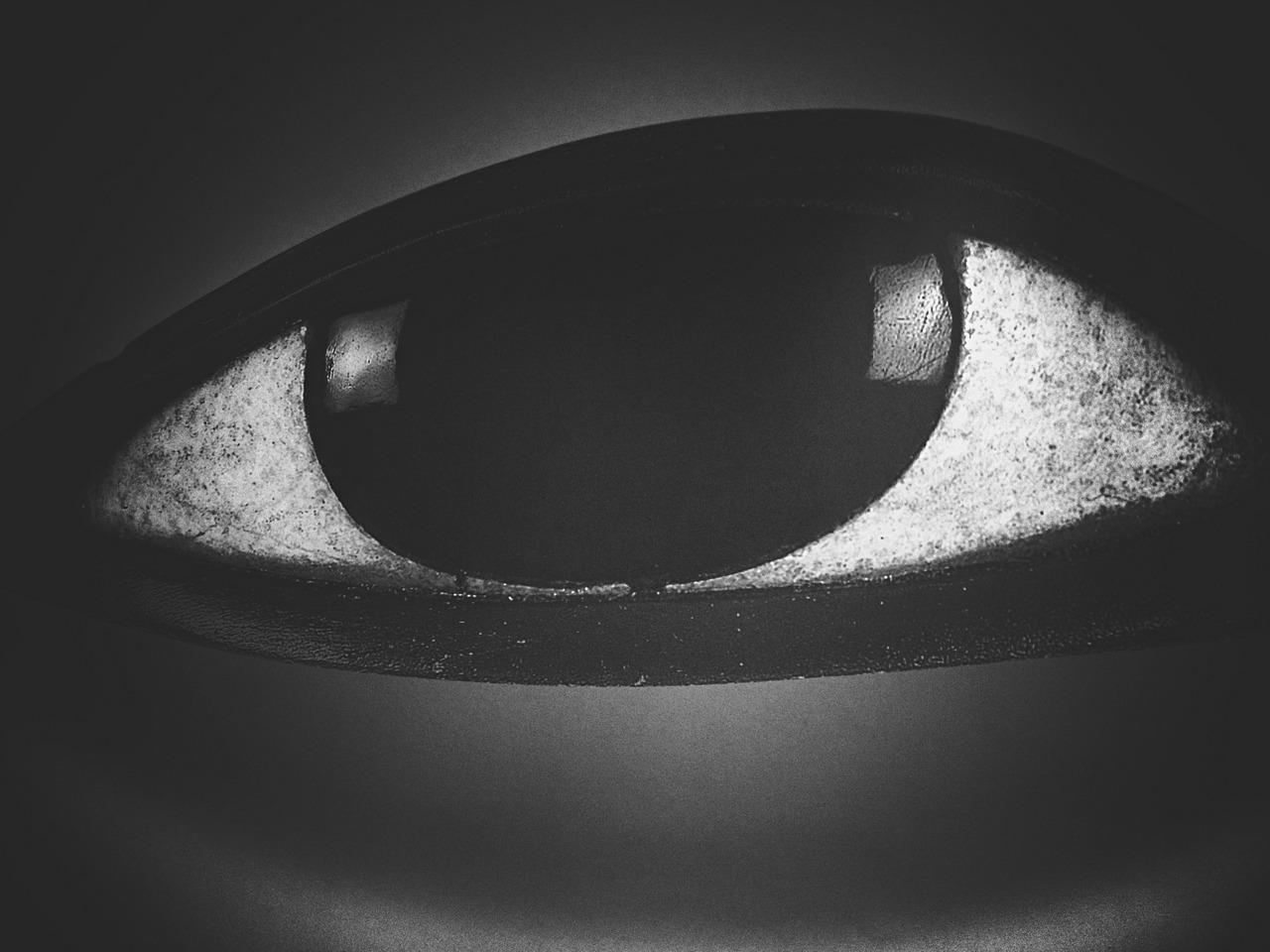 Eye Watching God 2#peppersearching #pepper #eye #blackwhite #painting