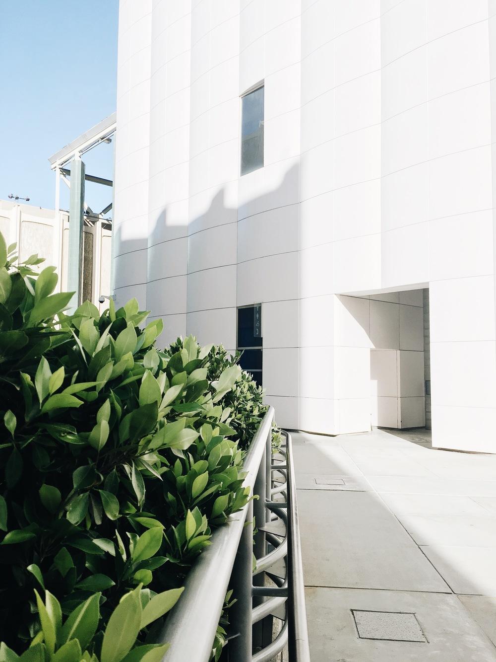 LACMA; Downtown LA