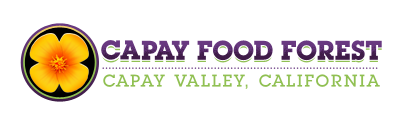 Capay Food Forest