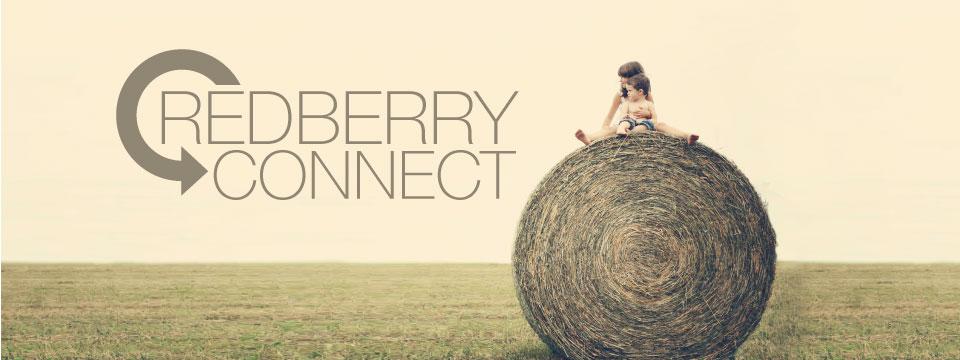 RedberryConnect.jpg