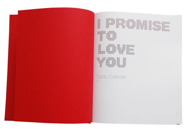 Ipromise_02.jpg