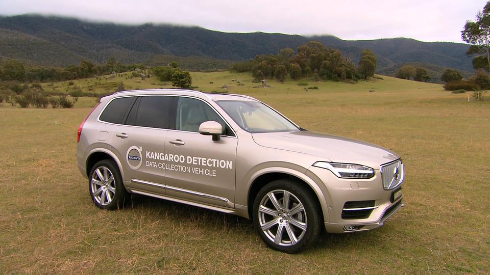 168854_Volvo_auf_Forschungsreise_in_Australien_City_Safety_erkennt_k_nftig_auch_K.png
