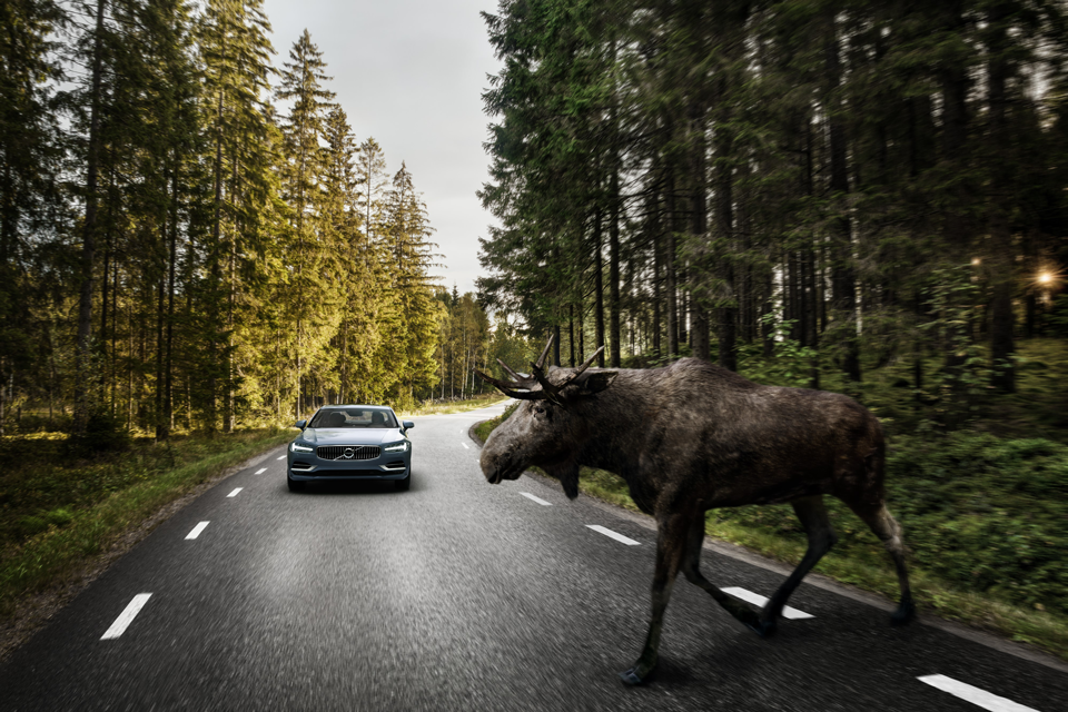 170929_Volvo_S90_City_Safety_f_r_gro_e_Tiere.png
