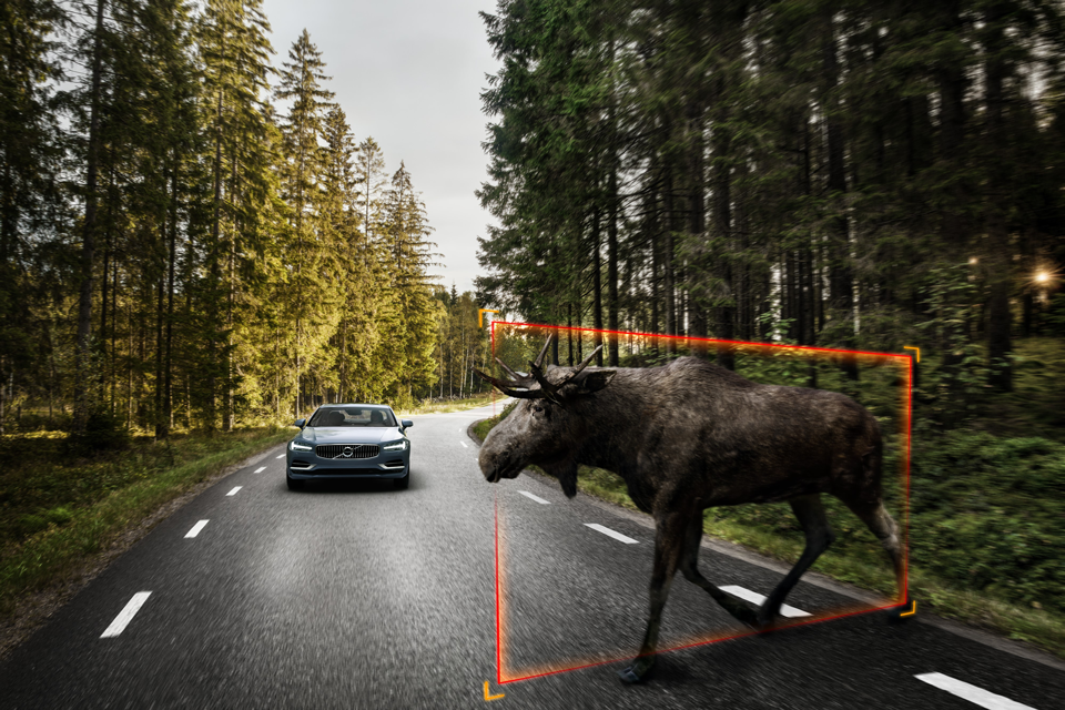 170930_Volvo_S90_City_Safety_f_r_gro_e_Tiere.png