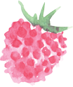 raspberry1.png