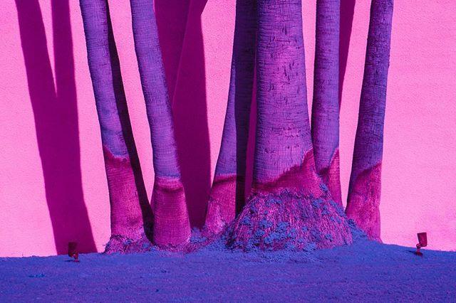 Infrared 💙