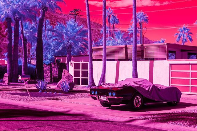 'Peekaboo' from my show 'Hypercolour Fantasy: Infra Realism' on show @garisandhahn from this Sunday - August 25 💖 The infrared photography process highlights the thriving palm trees in the aptly named Twin Palms neighbourhood of Palm Springs 🌴🌴