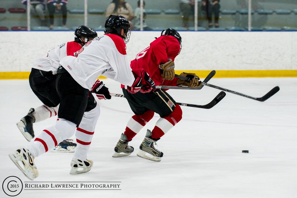 hockey 11.jpg