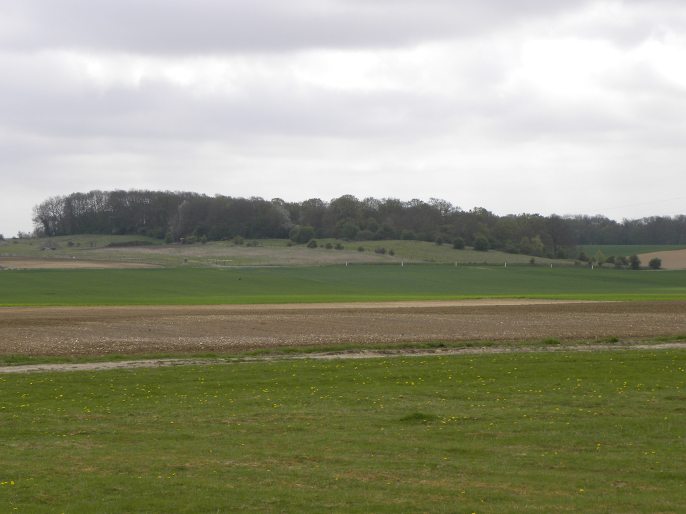"The forward slope of the Crow's Nest, ""a landmark for miles and the dominating position in the sector"" along the line of advance for No. 2 Company. The final few hundred yards were devoid of cover while the elevated Crow's Nest itself was partially forested and defended by dug in machine guns and mortars. (15th Battalion Memorial Project)"