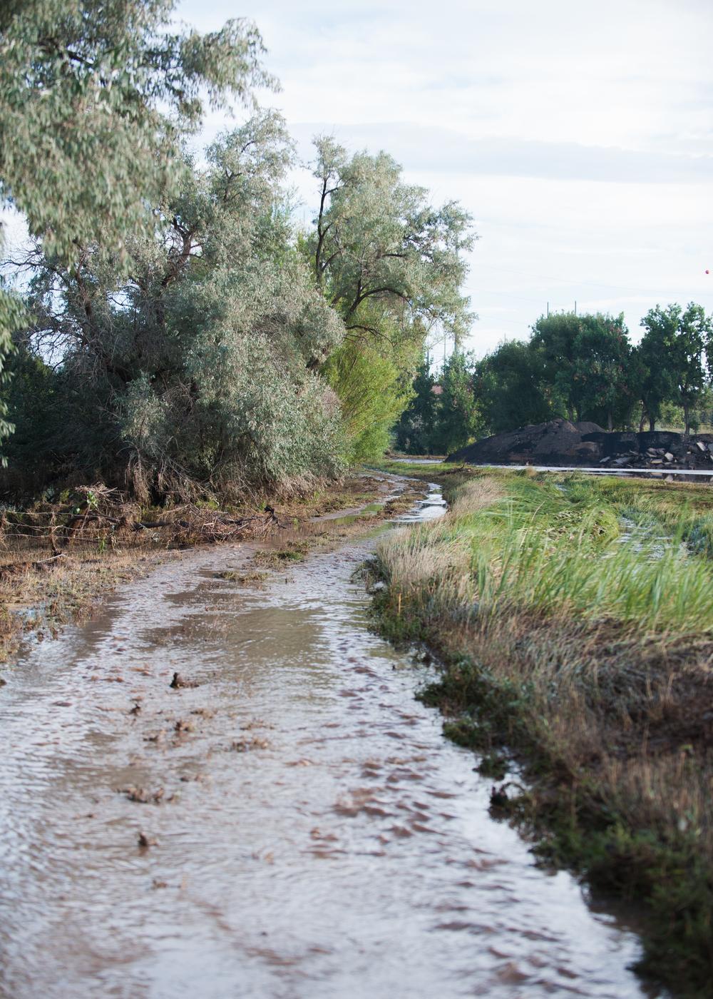 Flood-2013 (9 of 44).jpg