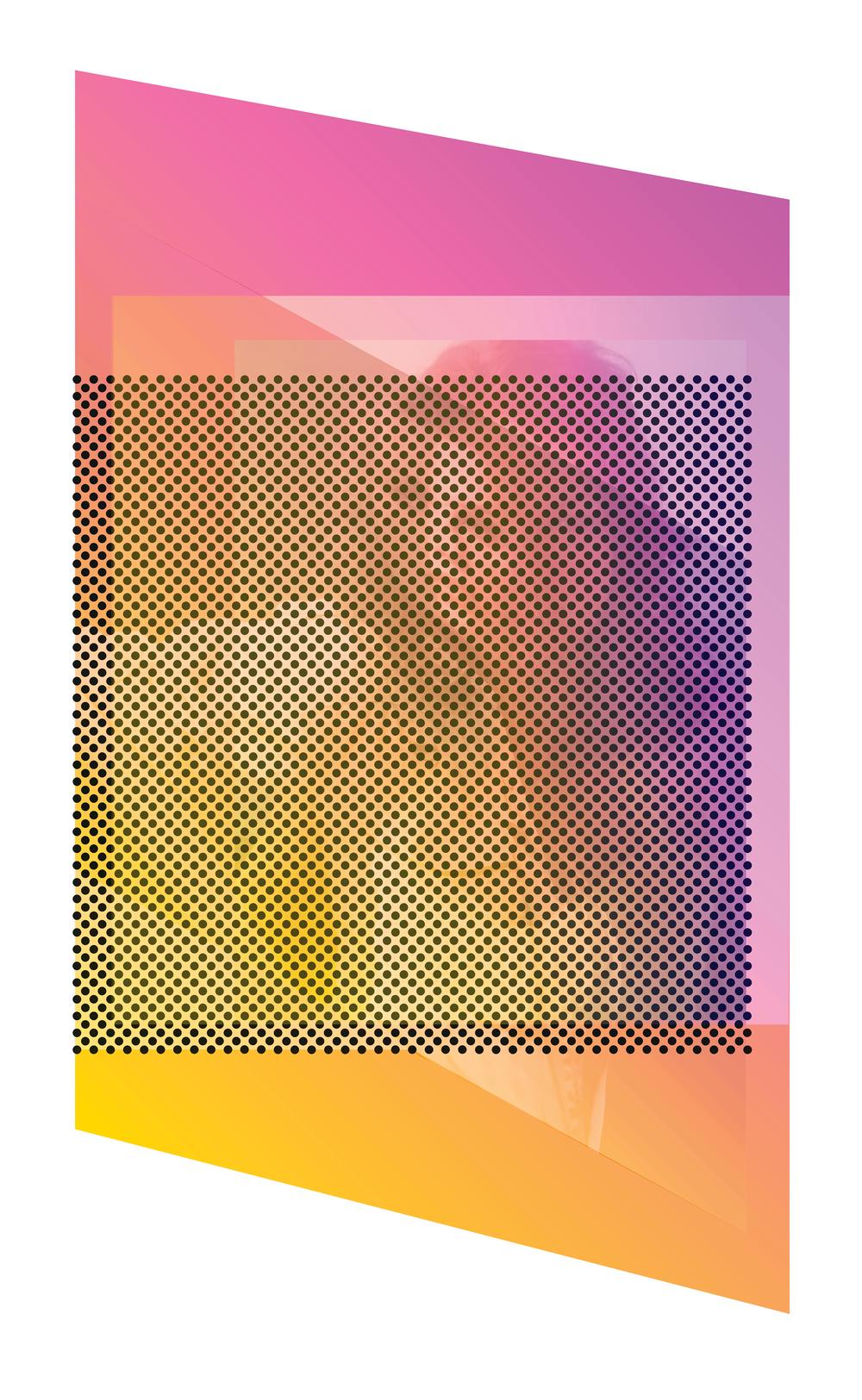 """Death of a Friend  2019, Inkjet Print  19"""" x 27"""" x1.5"""""""