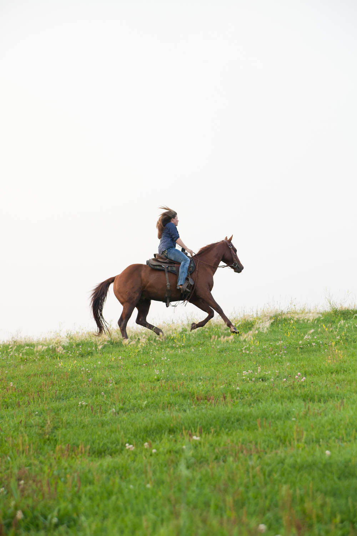 pasture lope.jpg