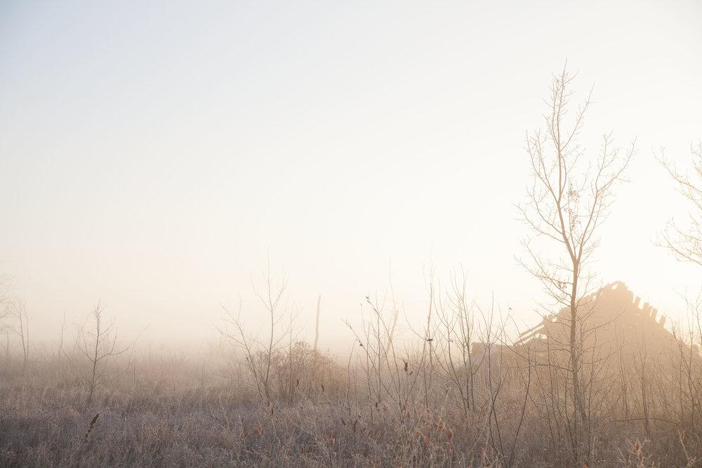 empty land.JPG