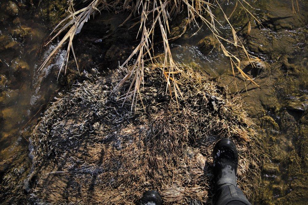 muck boots creek