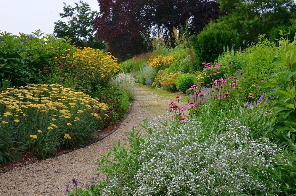 A path in the summer garden