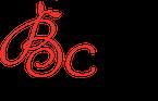 Logo-v12-final-blackC-left aligned highres.png