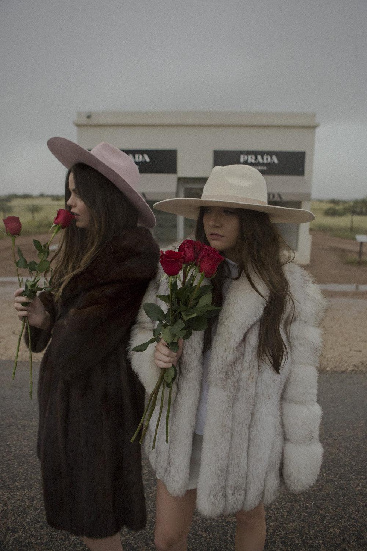 Roses_LackofColour_AUHatCompany.jpg