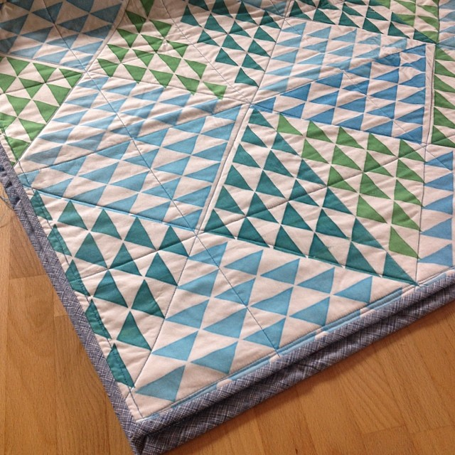 Hand printed cheater quilt with #botanics binding. I love @carolynfriedlander fabric!
