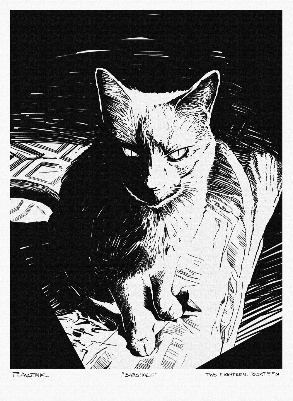 ...weekly sketch #7 of my cat Dignan...